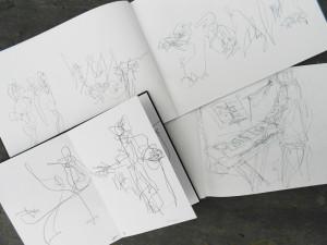 Biro drawings