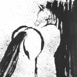 Looking Over Her Shoulder - 47cm by 47cm - ink