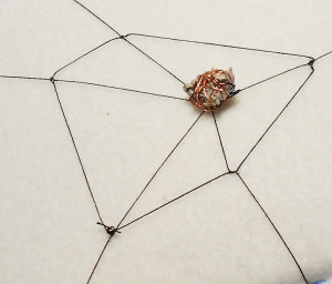 spiderswebmentalbox190317